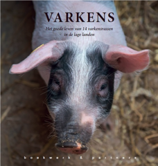 Books about pigs