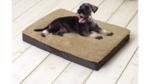 Orthopedic Dog Cushion 72x50x8cm Brown/Beige