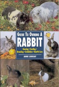 'Guide to owning a Rabbit' Anne Lindsay