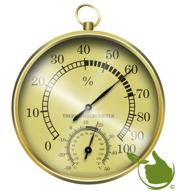 Thermometer / hygrometer (golden)