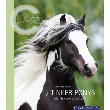 'Tinker Ponys' (Irlands coole Schecken) - Christiane Slawik