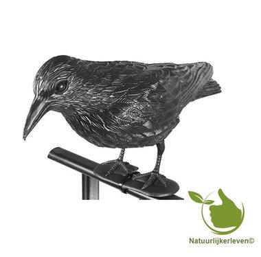 Standing plastic Raven
