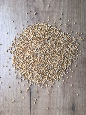 Mustard seeds yellow whole 120 gr