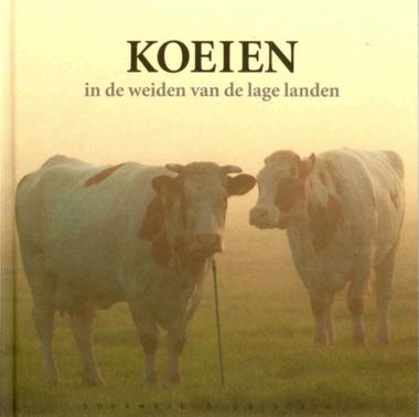'Koeien'- Reimer Strikwerda