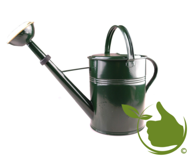 Authentic green lacquered watering can 9 liter with removable brass spray head