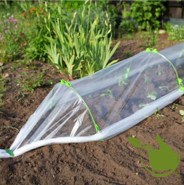 Folie-Tunnel Greenhouse 4 meter
